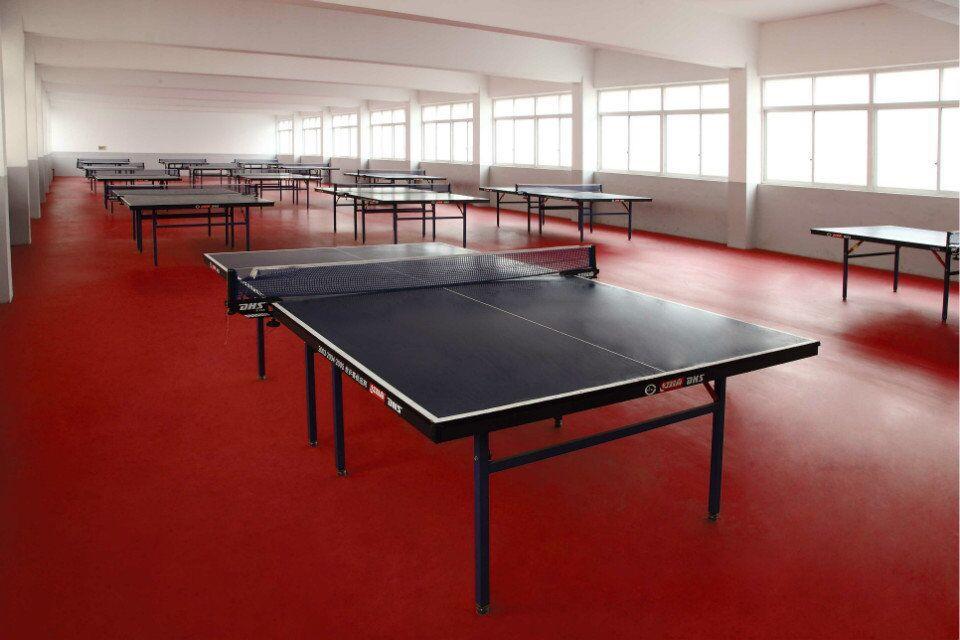 羽毛球专业运动地板 羽毛球专业地板 羽毛球地板