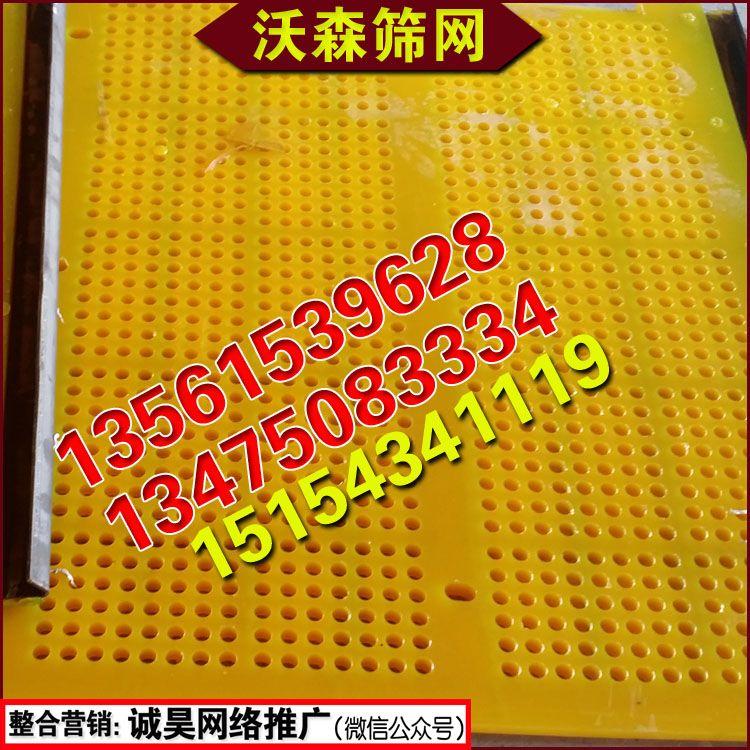 聚氨酯筛网聚氨酯筛板精细脱水筛网