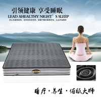 嘉洲床垫 德美健 纳米远红外磁疗床垫睡眠保健定制床垫