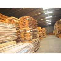 供应进口橡木烘干木材