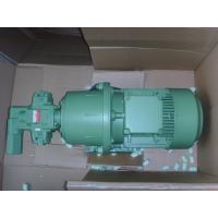 进口齿轮油泵 德国LYKAN莱肯品牌