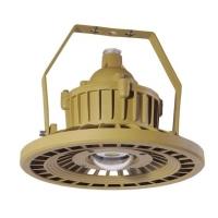 DGXDGD8902  LED防曝灯(30W-90W)