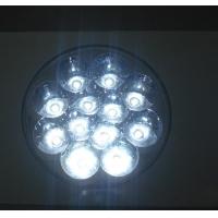 5W LED射灯,筒灯