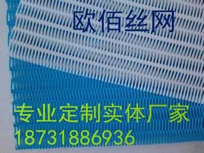 供应PET材质聚酯螺旋网带