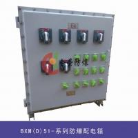 BXM(D)53油田专用防爆配电箱