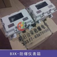 防爆仪表箱byb,防爆仪器仪表箱,定制防爆仪表箱