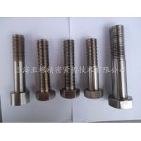上海亚螺精密紧固件主推成熟产品2507螺栓螺母