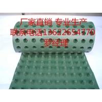 热销排水板绿化 疏水板屋顶滤水板免费拿样