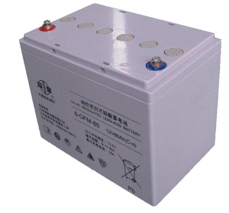 UPS专用蓄电池双登蓄电池12V100AH质保三年
