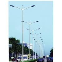 厂家生产路灯杆,太10米路灯杆