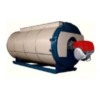 卧式燃气导热油炉