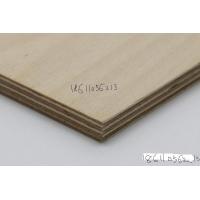 桦木多层板双12优惠
