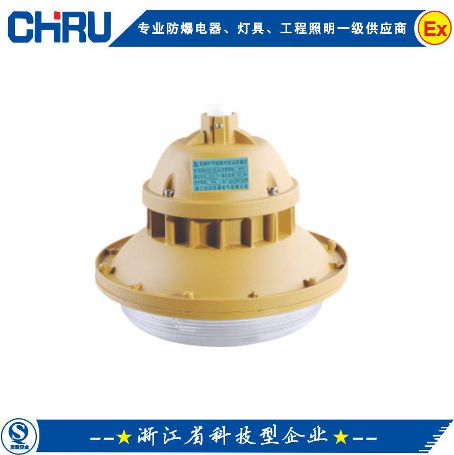 碼頭防爆照明燈(無極燈)CRD6103免維護節能防爆燈-- 創瑞電氣