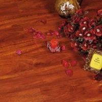 德宝地板V8系列小牛杉木强化地板