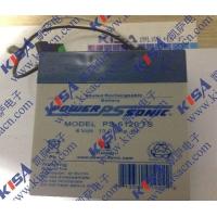 原装进口密封型铅酸蓄电池Power-Sonic PSH-65
