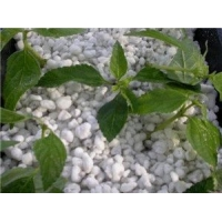 高档花卉种植必备育苗改良土壤最佳基质用膨胀珍珠岩