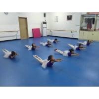 河北正蓝供应舞蹈房专用PVC地板