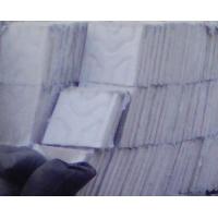 珍珠岩保温防火门芯板
