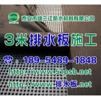 绿三江HDPE塑料排水板