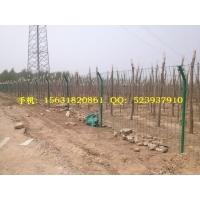 铁网围栏、河北铁网围栏、 防锈铁网围栏