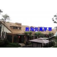 上海茅草 上海塑料茅草 品牌阻燃茅草