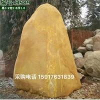 南通大型景观石 南通天然景观石 江苏大型黄蜡石出售