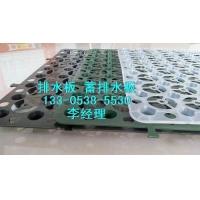 河南20高塑料滤水板&块状滤水板