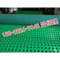 10mm厚凸壳型排水板