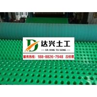 20mm高塑料排水板