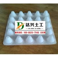 20高塑料排水板