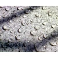 墙面防渗粉 水泥基渗透结晶防水涂料