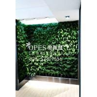 植物墙|仿真植物墙|垂直绿化|立体绿化|绿雕|南京奥佩斯