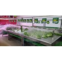 超声波工业加湿机超市蔬菜喷雾保鲜加湿器食用菌东莞保鲜加湿器