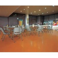 室内专业木质地板  家用木质地板