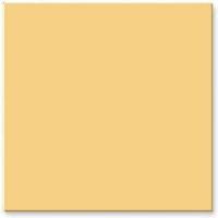 世陶磁砖-皇室典贵系列