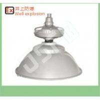 300瓦防水工矿无极灯 SBF6110节能无极灯