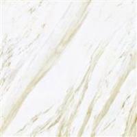 金科陶瓷-全抛釉、超平釉系列