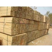 天津木方价格批发厂家