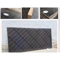 滨州建筑模板/竹胶板/桥梁板/杨木板现货供应