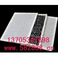 正品批發性能優良的膨潤土防水毯