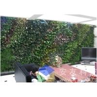 安友科技墙面绿化模块种植容器