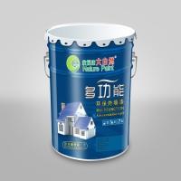 中国十大油漆涂料品牌 广东名牌乳胶漆 大自然漆招商