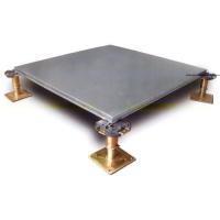 紫臣OA网络地板-南京耐士威防静电地板