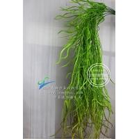 人造长条龙须草仿真植物墙绿植墙配材园艺景观饭店咖啡馆装饰绿植