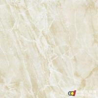 陶木然3d喷墨 成都瓷砖 6D103 600X600mm