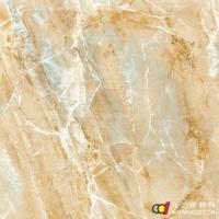 成都陶木然瓷砖 3d喷墨 6D104 600X600mm