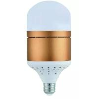 12W16W20Wled球泡灯