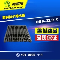 CBS-ZL910塑料防护排水板-山东澳树莱防水