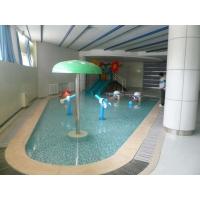 游泳池水质治疗医院,故障排除中心池源PH调节剂