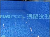 意大利进口FLAGPOOL泳池防水装饰胶膜